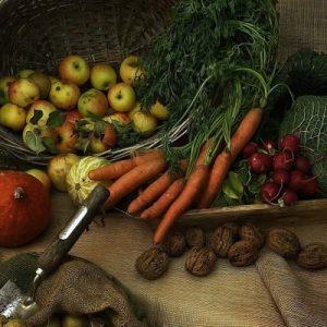 Nuovo studio francese: mangiare biologico riduce il rischio di cancro