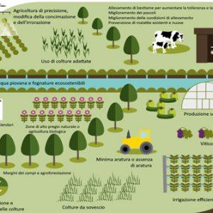 Il cambiamento climatico minaccia il futuro dell'agricoltura in Europa