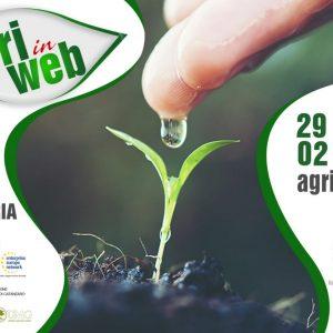 Comunicato stampa: ICEA partecipa alla prima fiera digitale per l'agricoltura organizzata in Calabria