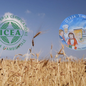 """Siglato protocollo d'intesa tra ICEA e IPSEOA """"E. Gagliardi"""" di Vibo Valentia"""