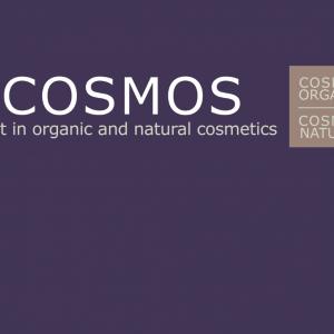 Consultazione nuova versione Standard COSMOS v4